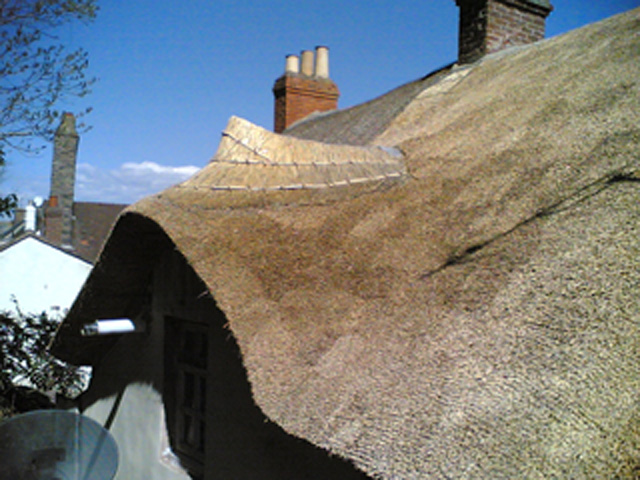 roof thatcher Somerset